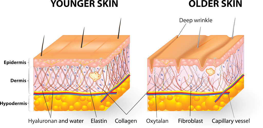 cosmetic dermatology microneedling sclerotherapy platelet rich plasma